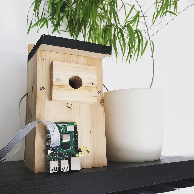 nest-nistkasten-kamera-vogelhaus-cam-era-überwachung-electreeks